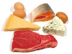белковая составляющая питания