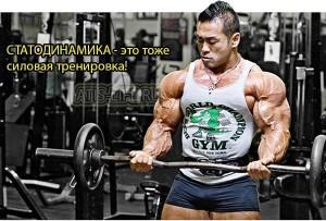 Статодинамика - это силовая тренировка