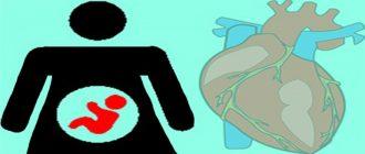 Лишний вес при беременности и порок сердца у ребенка